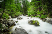 Mountain River. It's a long exposure Shot — Zdjęcie stockowe