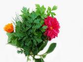 秋天的花束 — 图库照片