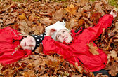 Resting in leaves — Stock Photo