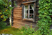 Old log house — Stock Photo