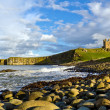 Stock Photo: Dunstanburgh Headland