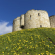 York Castle — Stock Photo