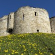 Stock Photo: York Castle