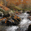 Stock fotografie: Small overfall in autumn colours