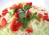 Fresh cabbage and red pepper salad with fresh, green oregano, rosemary and parsley — Stock Photo