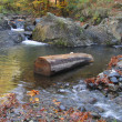 Fir log lying below shallows waterfall of mountain stream in autumn — Stock Photo #14061537