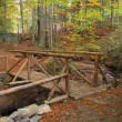 Stock Photo: Wooden bridge over stream in autumn forest