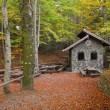 Stock Photo: Picnic arewith small stone house in autumn forest
