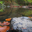 Silent, clear water of mountain stream and autumn leaves — Stock Photo