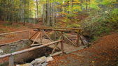 Wooden bridge over stream in autumn forest — Fotografia Stock