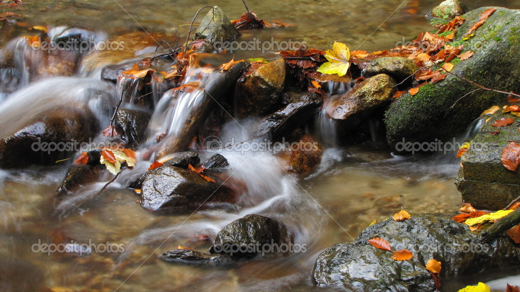 Autumn leaves on a stones in mountain stream — Stock Photo #14145409