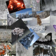 Stock Photo: Winter theme collage 2