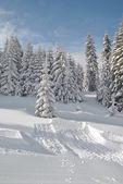 Besides ski slope — Stock Photo