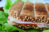 Integral toast, ham and cheese sandwich 5 — Foto de Stock