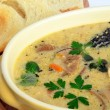 Wild mushrooms cream soup 3 — Stock Photo
