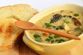 Wild mushrooms cream soup 2 — Stock Photo