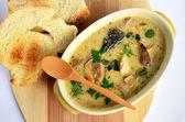 Hříbky krémová polévka 1 — Stock fotografie