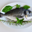 Fresh fish 1 — Stock Photo