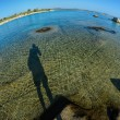 Stock Photo: Fisheye seascape 5