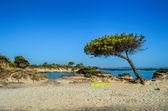 Plaj 2 — Stok fotoğraf