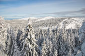Mountain in winter — Stockfoto