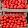 Tomato in crates — Stock Photo