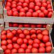 Tomato in crates — Stock Photo