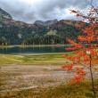 Glacial lake in autumn — Stock Photo