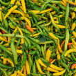 Hot green and yellow peppers — Stock Photo
