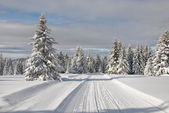 Snowy mountain road — Foto de Stock