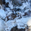 Frozen stream — Stock Photo