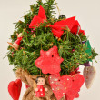Red Holiday decoration — Stock Photo