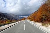 Podzimní asfaltové silnici — Stock fotografie
