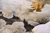 Golden stream — Foto de Stock