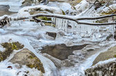 Stream, branch and icicles — Stockfoto