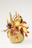 Сухие растения композиция — Стоковое фото