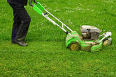 Mowing the grass — Stockfoto