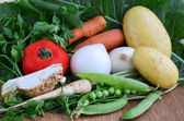 Different sorts of vegetables — Stock Photo