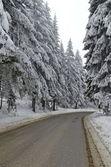Mountain road by forest in winter,Rila mountain, Borovetz — Stock Photo