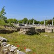Wall and columns of the ancient Roman town Abritus, Razgrad town — Stock Photo