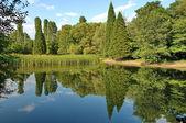Beautiful landscape with reflection — Stock Photo