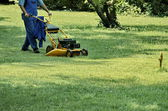 Еxperienced worker cut grass — Stock Photo