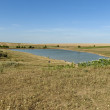 Stock Photo: Small dam lake by wheat rural field