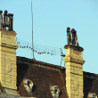 Fragment of roof and chimney — Stock Photo