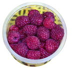 Raspberry fruits — Stock Photo