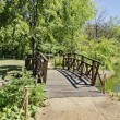 Little bridge by water-lily lack — Stock Photo