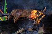 Lamb roasted whole — Stock Photo