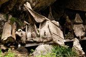 Groby w wiosce w tana toraja, Indonezja — Zdjęcie stockowe