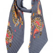 Grey silk scarf with colors — Stock Photo #48257989