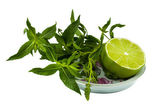 Lime with mint sprigs on a saucer — Stock Photo